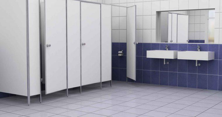 Сантехнические перегородки – самый удобный способ организации пространства